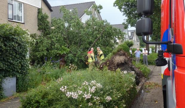 KAMPEN - Vrijdagavond 18 juni tegen 19.05 uur is door een flinke windvlaag een boom tegen een woning en auto omgewaaid aan de Marinus Postlaan in Kampen. De brandweer kwam naar het incident en deed onderzoek. Ze hebben de boom met behulp van een zaag in stukken gezaagd. Door het incident is niemand gewond geraakt.