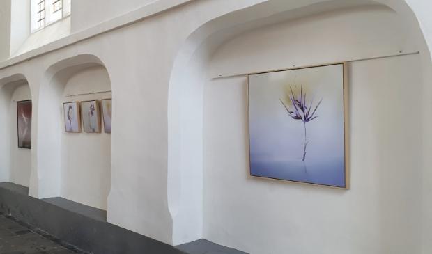 expositie Kleine Kerk Steenwijk
