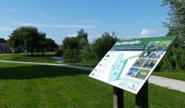 De mooie, groene omgeving van de vijver aan de Weteringallee wordt benut om in te richten als een wandel- en beweegpad voor jong en oud.