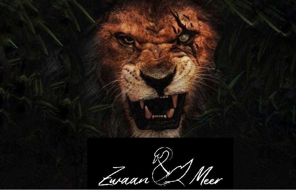 Film: De Leeuwenkoning