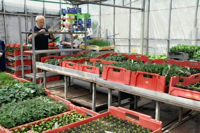 Open Dag bij tuinvereniging Tuinlust