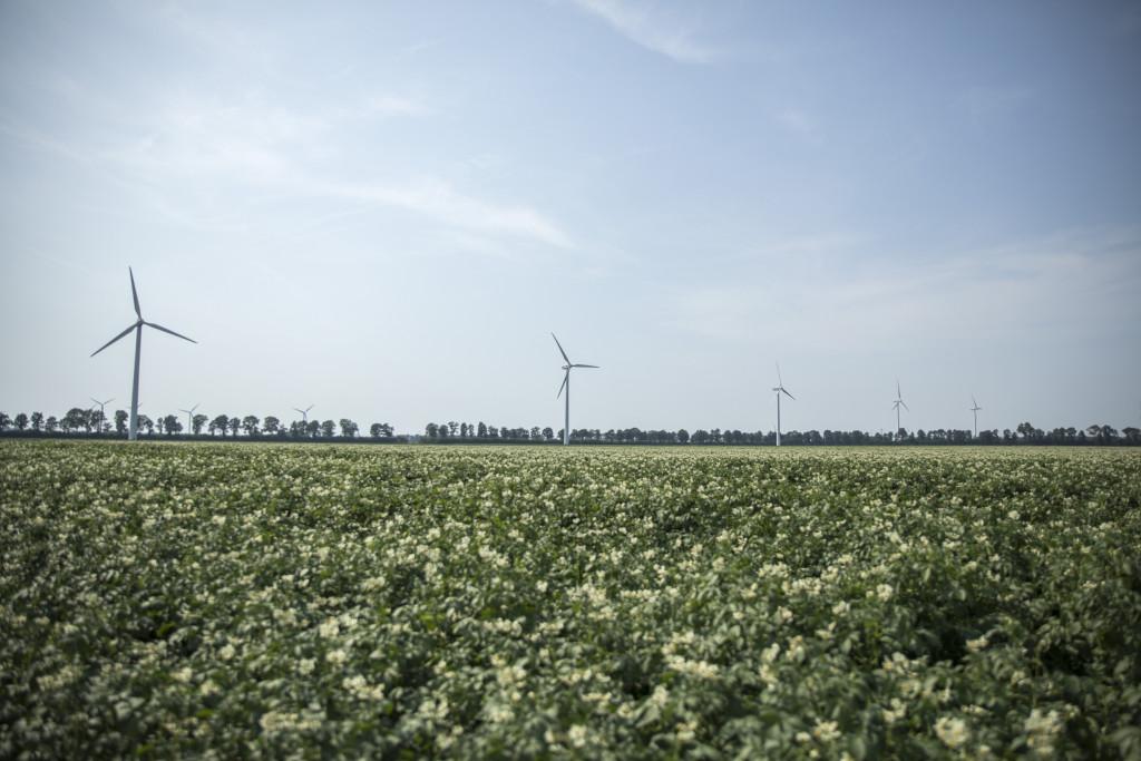 Windplan Blauw vraagt 500 euro per obligatie; Swifterbant als eerste aan de beurt
