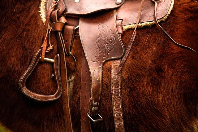 Paardensportbond stelt Gert Naber uit Biddinghuizen aan als teammanager academie