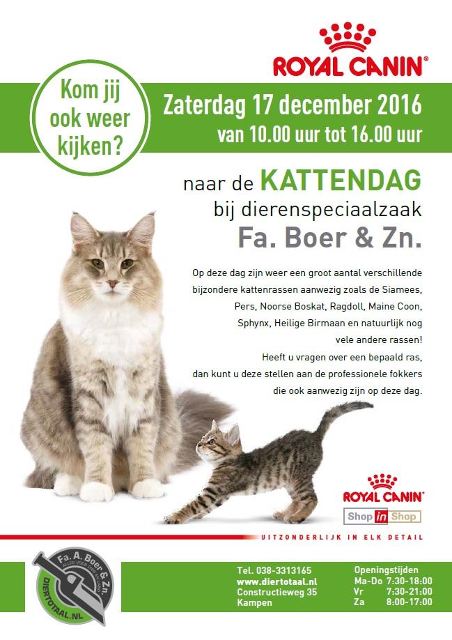 Kattendag Diertotaal.nl Firma Boer