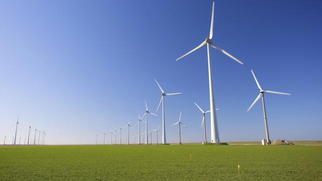 Felle weerstand tegen windmolens in Marle
