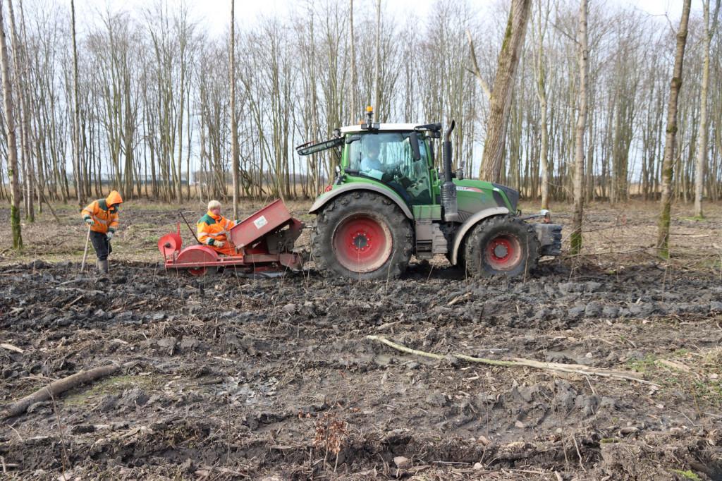 Ruim 160.000 bomen geplant in Horsterwold