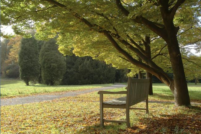Kranenburg heeft plan voor natuurbegraafplaats