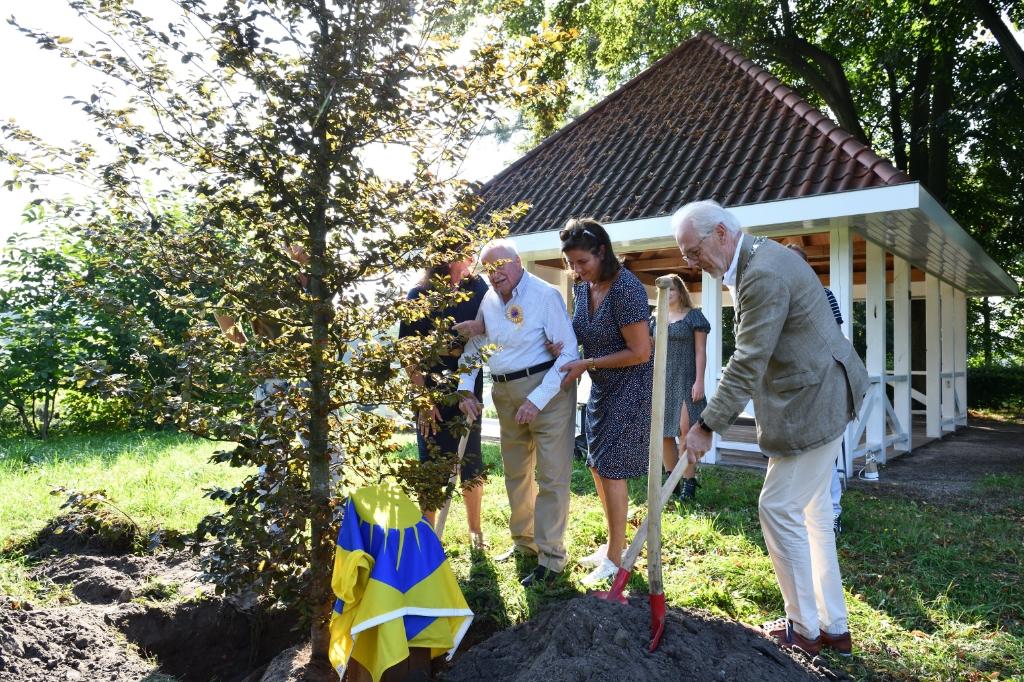 Hr. Kole plant zijn eigen levensboom Foto: Wil Feijen © DeMooiSonenBreugelKrant