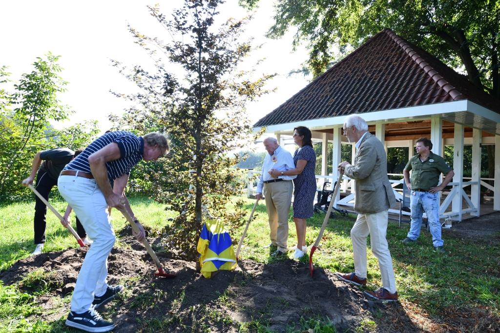 Hr. Kole plant met zijn familie zijn eigen levensboom Foto: Wil Feijen © DeMooiSonenBreugelKrant