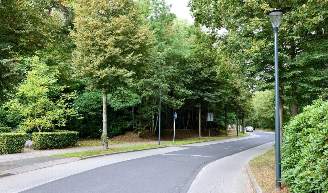 Een onoverzichtelijke situatie waar de fietsers voorrang hebben op het verkeer dat op de Hendrik Veenemanstraat rijdt