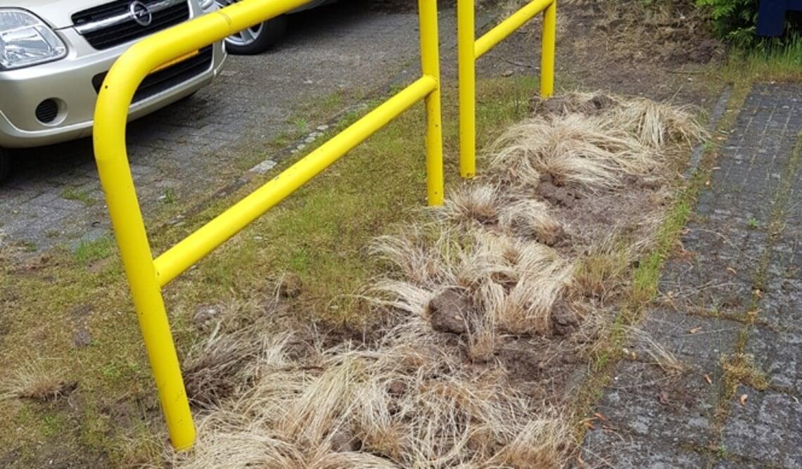 <p>Hoog gras dat blijft liggen nadat het losgeschoffeld is</p>