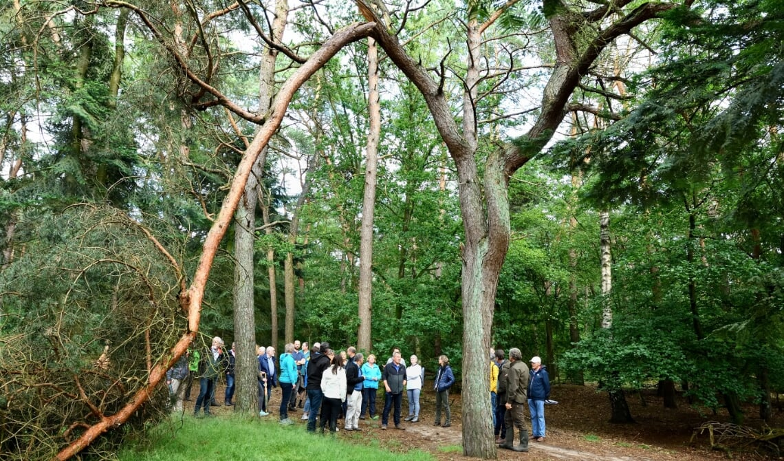 <p>Er was veel belangstelling voor de excursie die eerder dit jaar werd gehouden door Bosgroep Zuid-Nederland (archieffoto)</p>