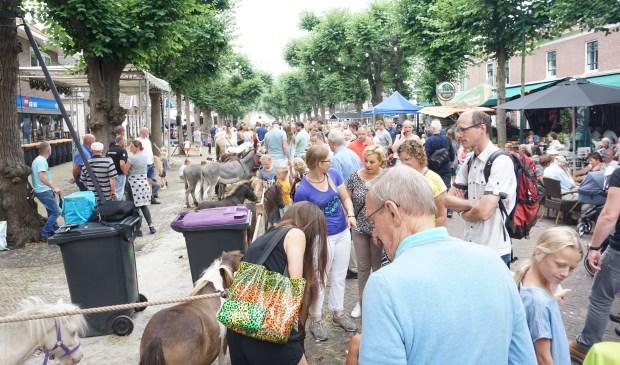 Een gezellige drukte op de Paardenmarkt foto: Vsk © VSK