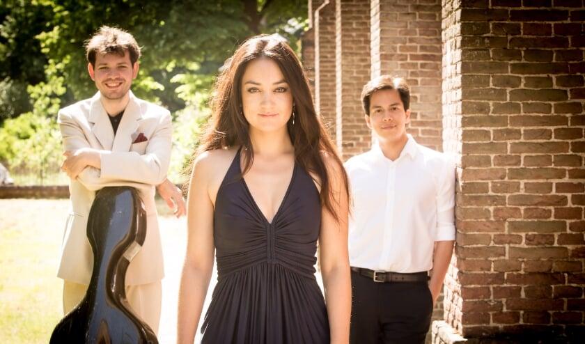 <p>Trio 258 speelt op 29 oktober in de Dorpskerk.&nbsp;</p>