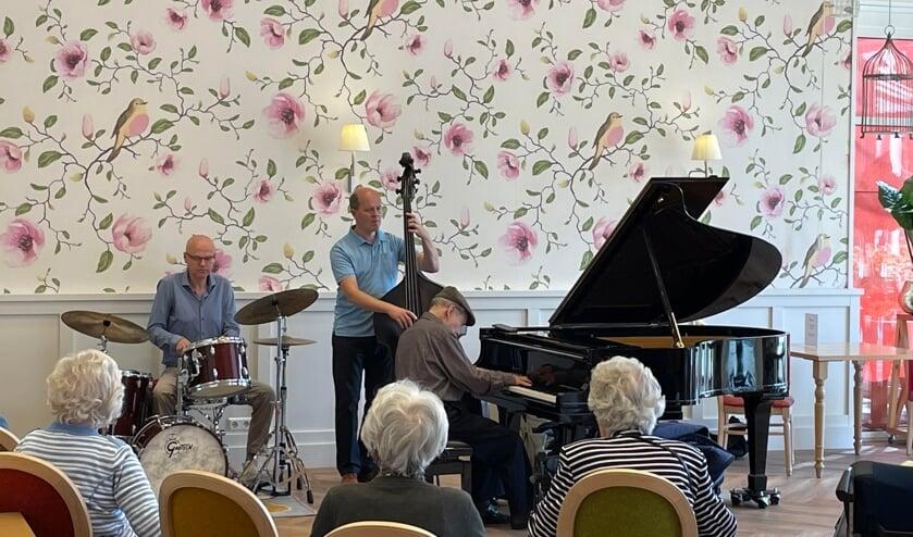 <p>Trio Agerbeek/Klapwijk/Albjerg gaf een concert in Adegeest. Foto: PR</p>