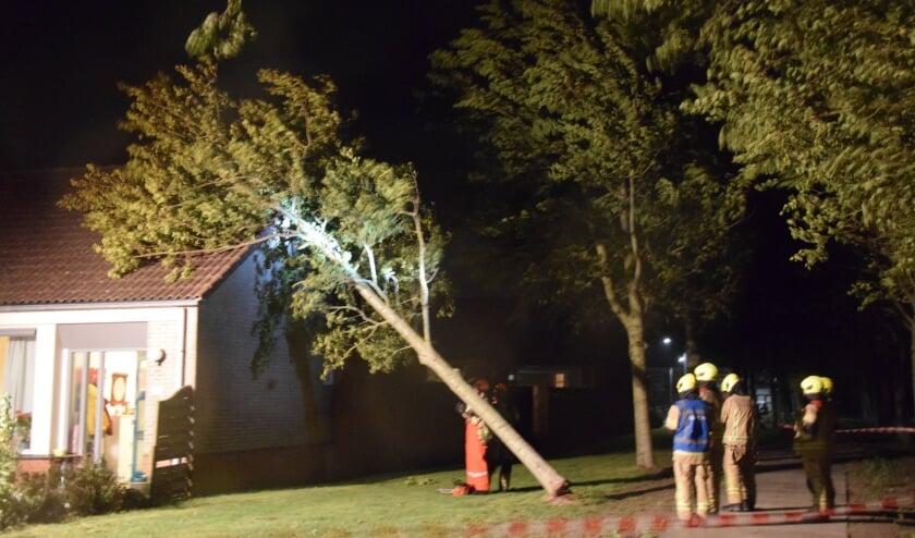 ZIERIKZEE - Dinsdagavond 25 augustus rond 22.10 uur is een boom aan de Graspieperstraat in Zierikzee tegen een woning omgewaaid. De brandweer heeft door middel van een hoogwerker de boom verwijderd en in kleine stukjes gezaagd. De woning liep lichte schade op. Er vielen bij het incident geen gewonden. Vermoedelijk heeft de harde wind er voor gezorgd dat de boom tegen de woning heeft kunnen belanden.