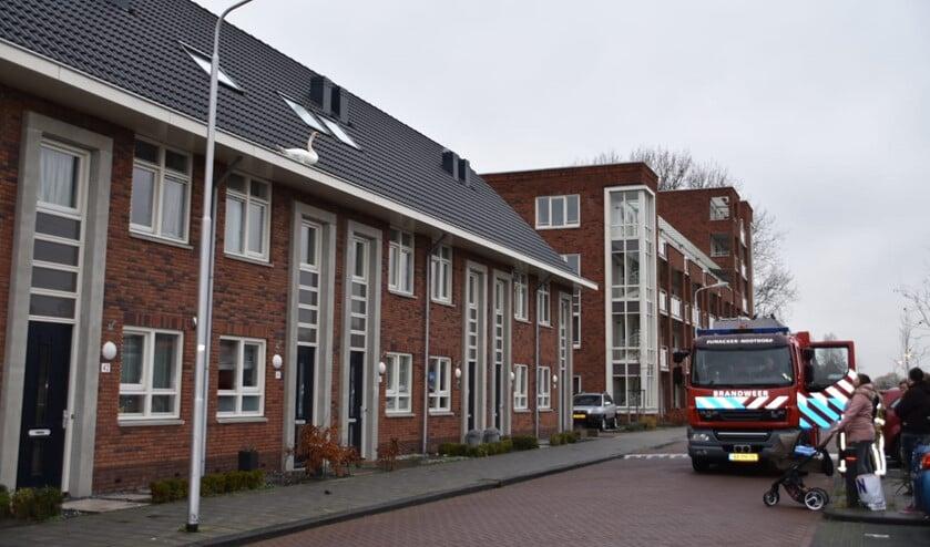 Beelden: Ackershof 2