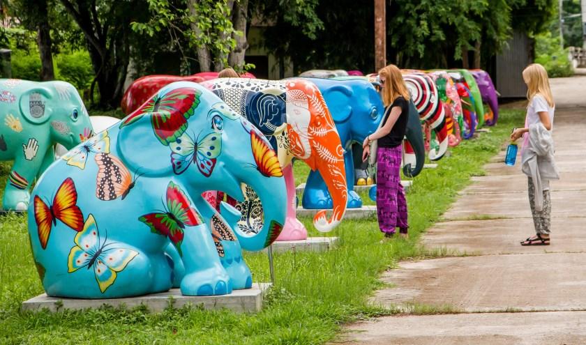 Unieke tentoonstelling van full size beschilderde olifantenbeelden komt nu ook naar het Woonhart Zoetermeer. Foto: pr