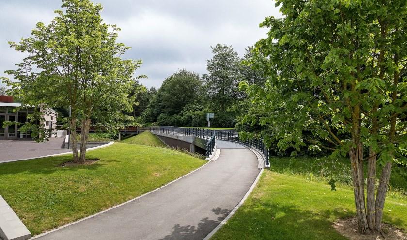 Meer weten over de begraafplaats Hoflaan? Aanmelden voor de wandeling kan tot 22 mei. Foto: FOTOFLEX.NL