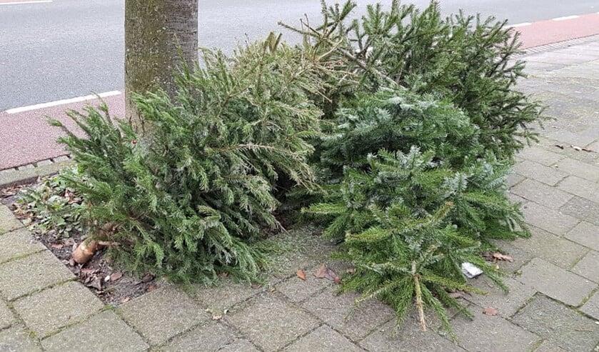 <p>Vanaf volgende week kunnen kerstbomen (op twee dagen) weer bij de gemeente worden ingeleverd (foto: gemeente LV).</p>