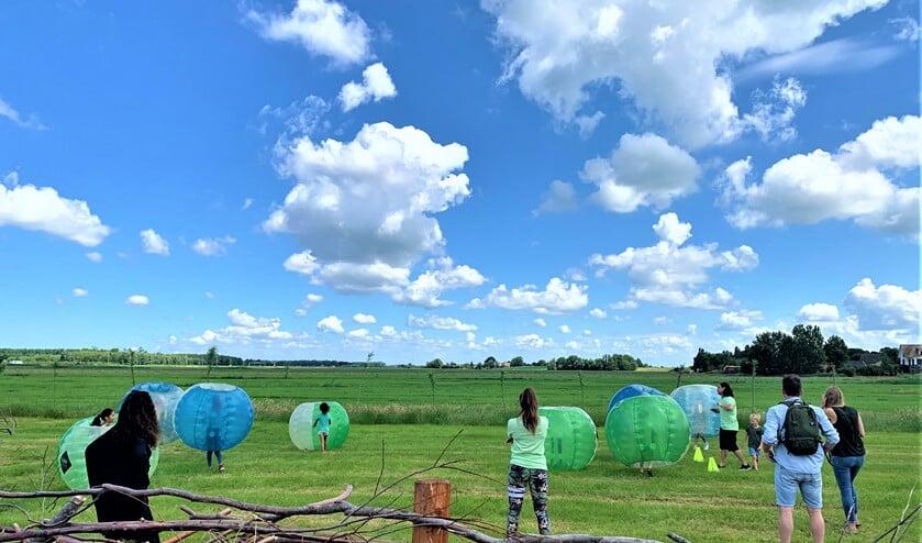 De opblaasballen met koppeltjeduikelende kinderen en volwassenen rolden volop door de wei (foto: pr).