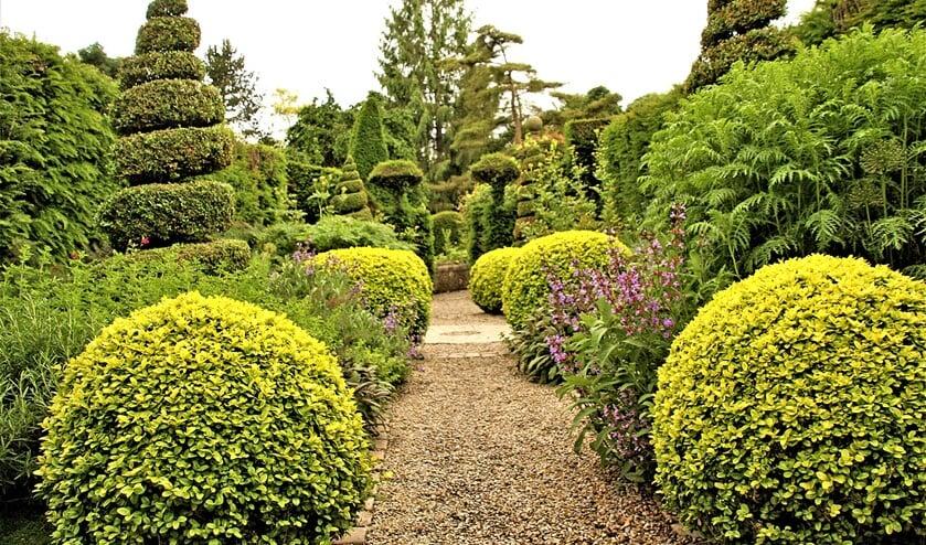 <p>In je tuin ook in de herfst veilig voor corona; hier de York-Gate Garden (foto: pr Groei&Bloei Leidschendam-Voorburg).</p>