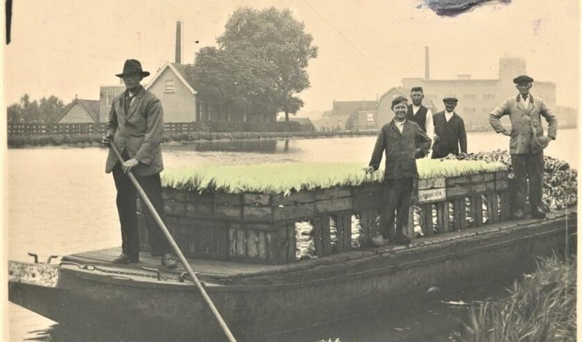 Veilingschuit op de Vliet ca 1930 (archieffoto).