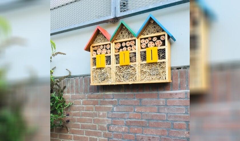 Fleurig insectenhotel. Foto: Simone Buitenweg.