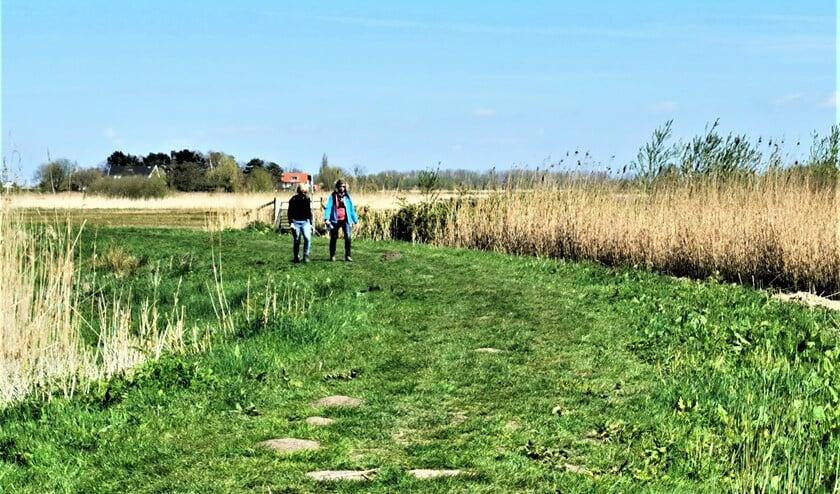 Er wordt gewandeld in de omgeving van Stompwijk, Vlietland en Leidschendammerhout (foto: pr SenW).