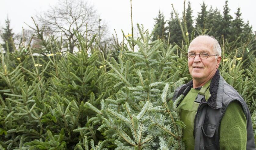 <p>De gemeente Venray gaat ook dit jaar de kerstbomen op een aantal locaties verzamelen.&nbsp;</p>
