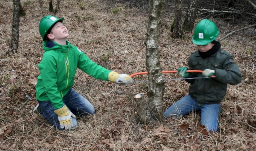 Jong Nederland Venray helpt de natuur een handje.