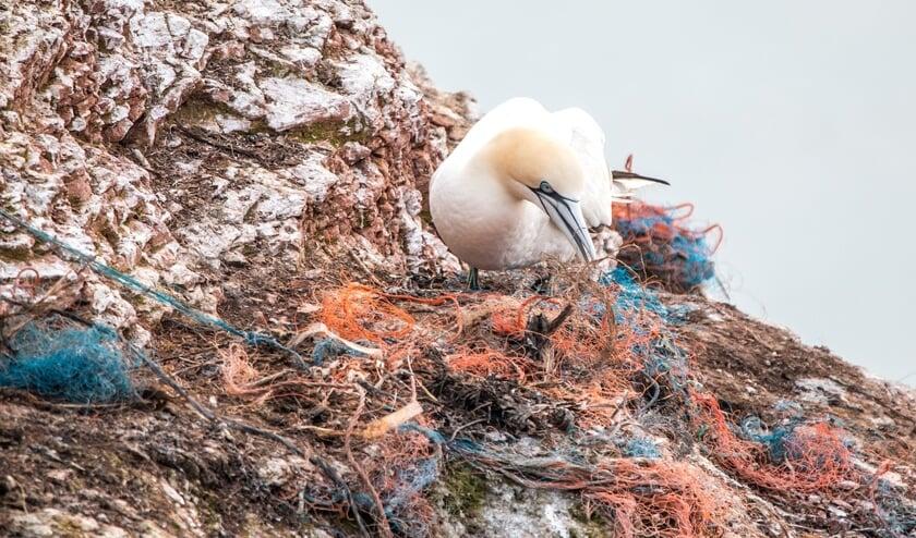 In onze oceanen drijven vijf gigantische vuilnisbelten met kunststofafval.