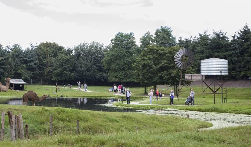 In ZooParc Overloon werd in de nacht van maandag op dinsdag een inbraak gepleegd.