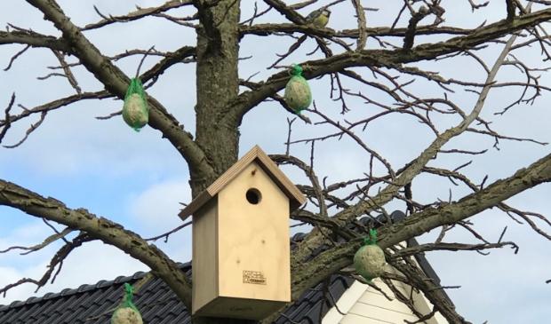Grote schoonmaak van de vogelhuisjes
