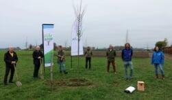 Natuurplan Kreeftenheide aanwinst voor Siebengwald