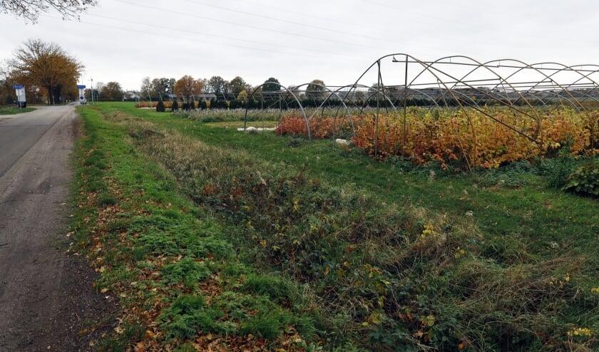 <p>De beoogde locatie van het nieuwe industrieterrein De Spurkt.&nbsp;</p>