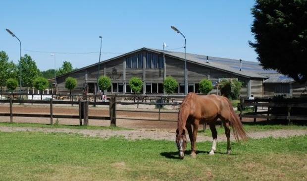 <p>Ruitersportcentrum Seurenheide gaat huren van de gemeente</p>