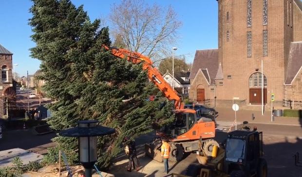 De Kerstboom op het Raadhuisplein is weer geplaatst