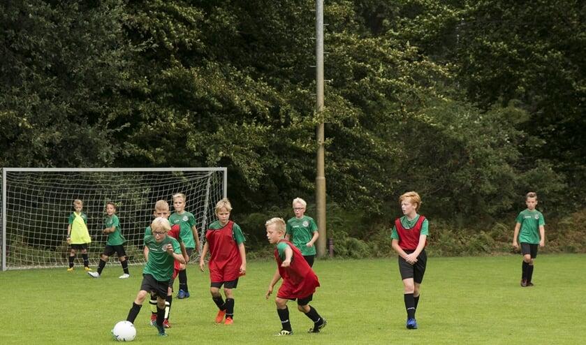 Liefst 160 voetballers uit de regio nemen deel aan de voetbaldagen in Horst.