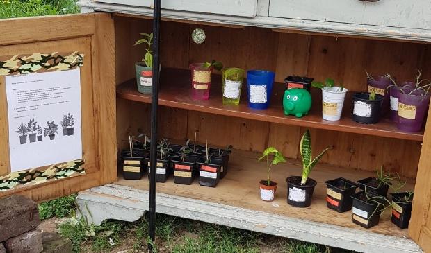 <p>Als het kastje aan de weg staat is de plantenbieb geopend</p>