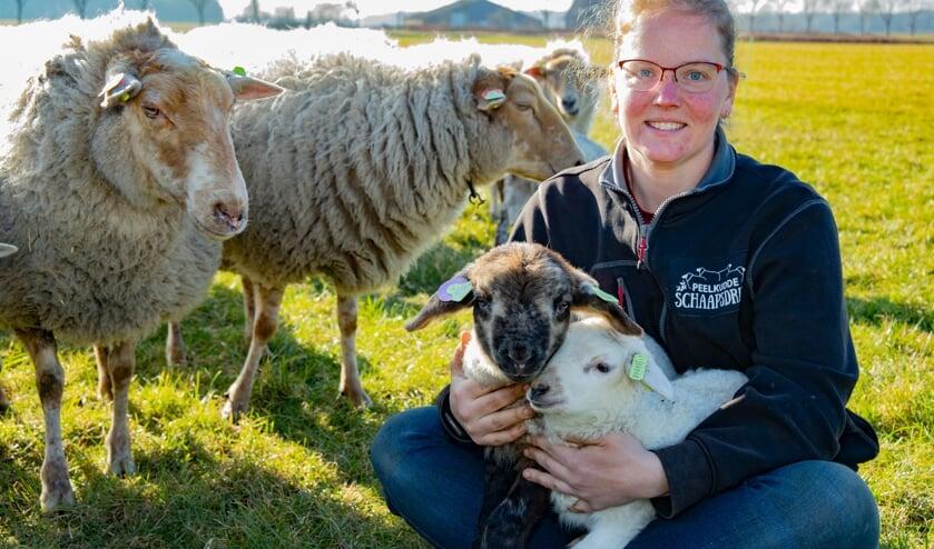 <p>Tineke Camps mag dit jaar bijna 300 jonge lammetjes begroeten.</p>