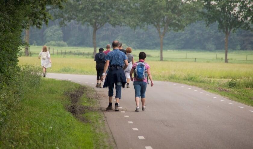 <p>Vanaf deze maand zet het Meerdaags Wandelevenement Venray maandelijks een wandeltrainingstocht op touw.&nbsp; &nbsp;</p>