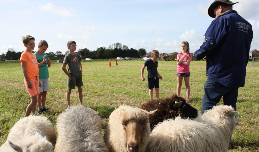 Enkele kinderen bekijken de schapen op Spreeuwenstein (Foto: Kees van Rixoort).