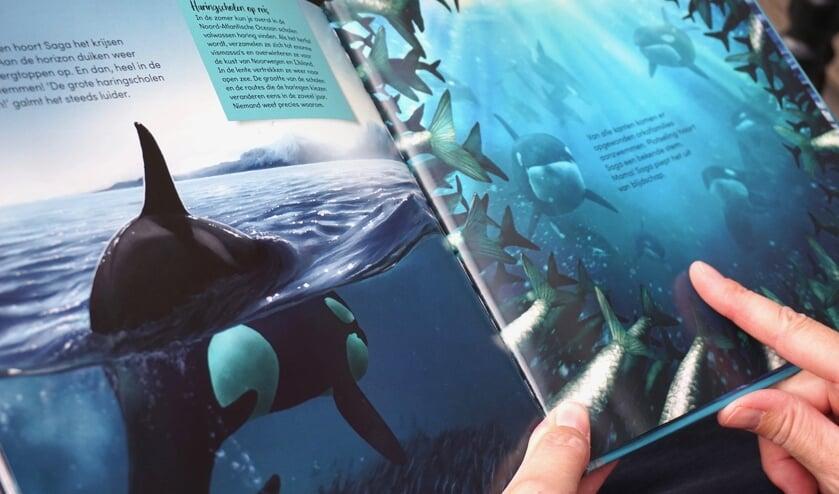 Een pagina uit het boek 'Saga, de orka die geen haring lustte'.