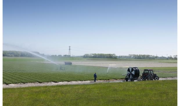 Boeren gebruiken nu nog omstreden gewasbeschermingsmiddelen. Vanaf november wordt overgestapt op duurzamere landbouw.