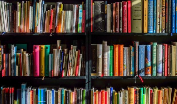Bibliotheek in drie dorpskernen van Egmond.