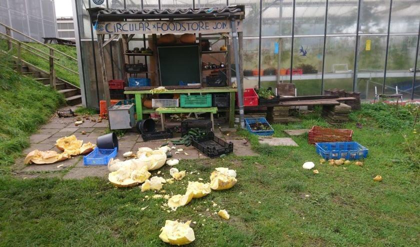 Vandalen hebben vele producten, zoals pompoenen, in de voedseltuin vertrapt en de boek kapot gemaakt.