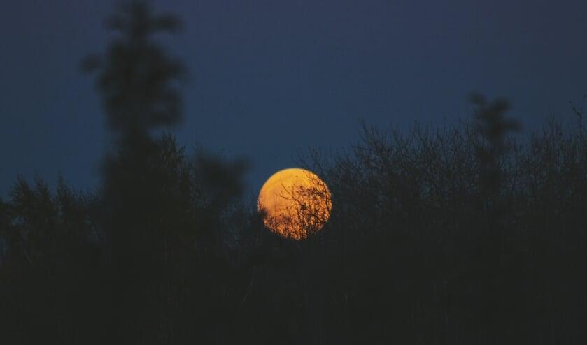 Hoe donker is het in Wormerland tijdens de Nacht van de Nacht?