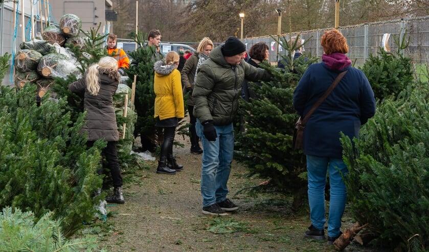 Bestel een kerstboom en steun de voedselbank in Purmerend.