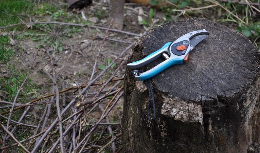 Een beter groen- en maaibeleid is gewenst door de Bomenwachters